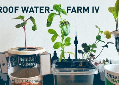 tu pro­ject – Roof Water-Farm IV
